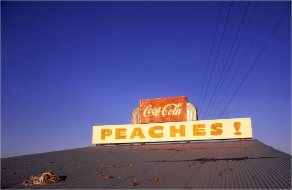 5._Untitled _1971_Eggleston