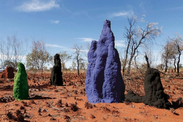 FINAL termite-mounds large_color_rgb2 share-1