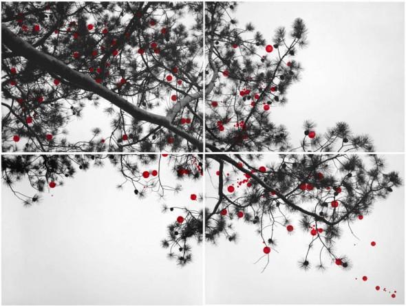 41_branch
