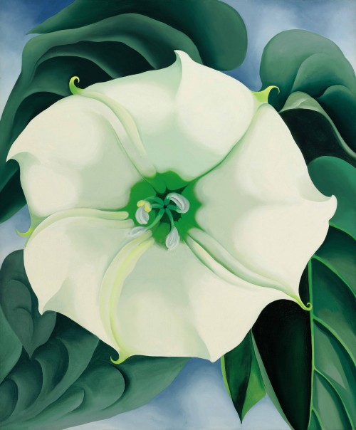 "Georgia O'Keeffe's ""Jimson Weed/White Flower No. 1 (1932)"""