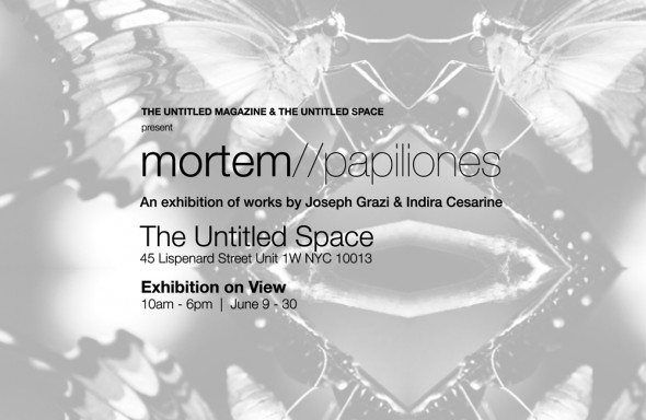 Mortem-Papiliones-Exhibition
